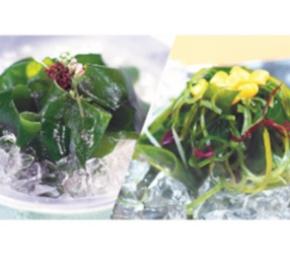 〈リアス海藻店〉『三陸鮮わかめ』と『岩手の海藻サラダ』セット